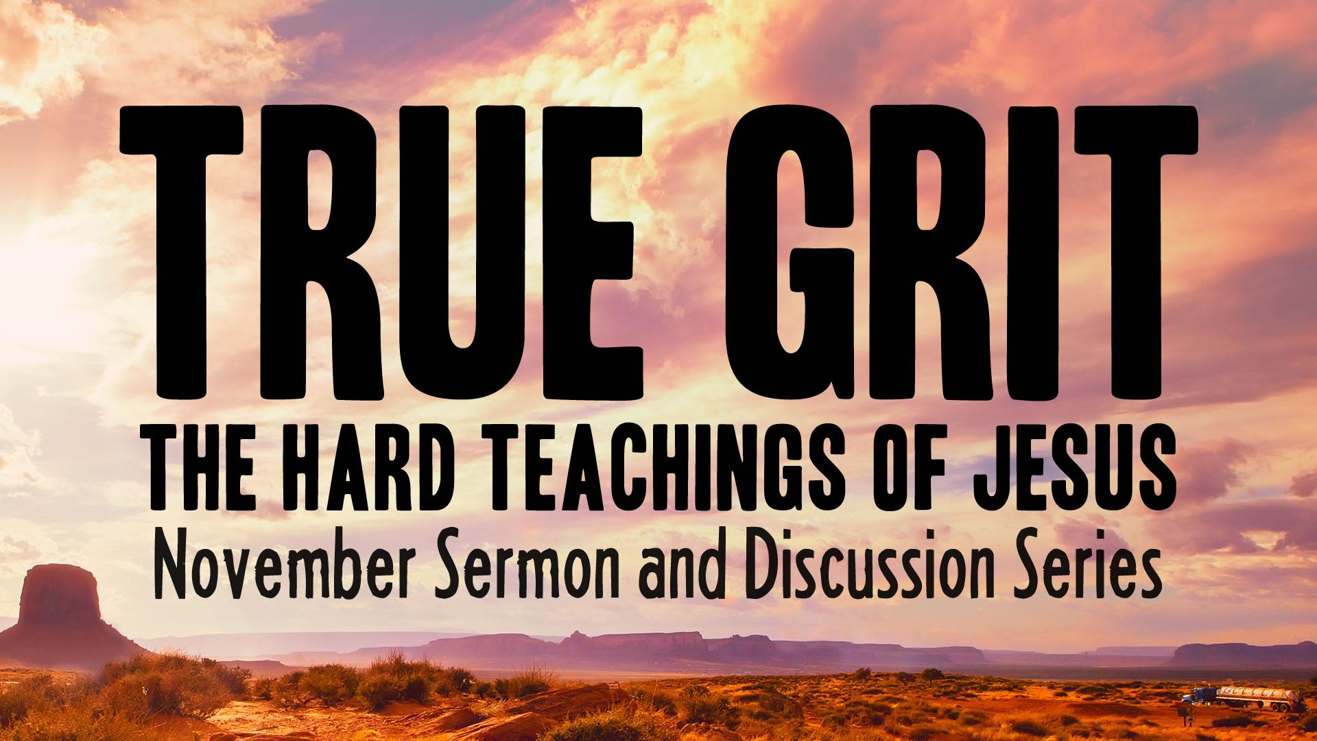 True Grit poster 2.jpg