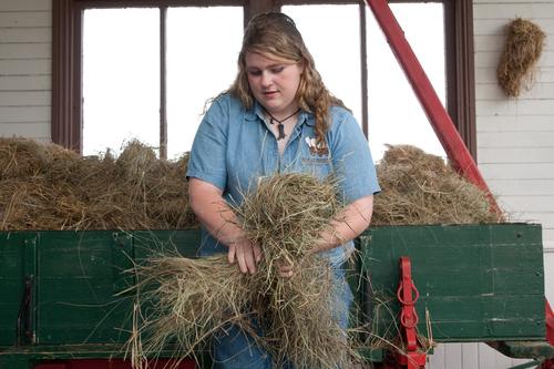 Hay+Twisting+from+The+Long+Winter.jpg