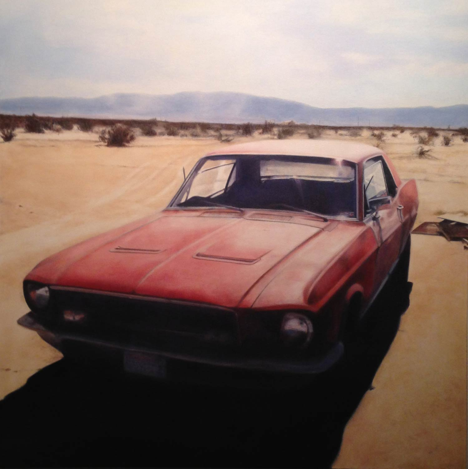 Mustang, 2011 Oil on canvas 36 x 36 inches