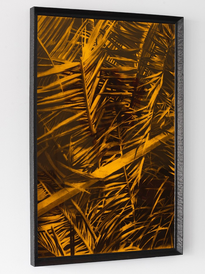 Douglas Stichbury  Storage solutions (leaves) , 2015 Framed charcoal on paper 1310 x 840 mm  _______