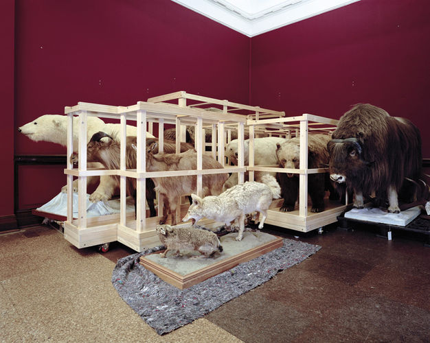 Neil Pardington  Large Mammal Storage Bay #1, Canterbury Museum , 2007 LED / C-Print Dimensions variable Edition of 15  _______