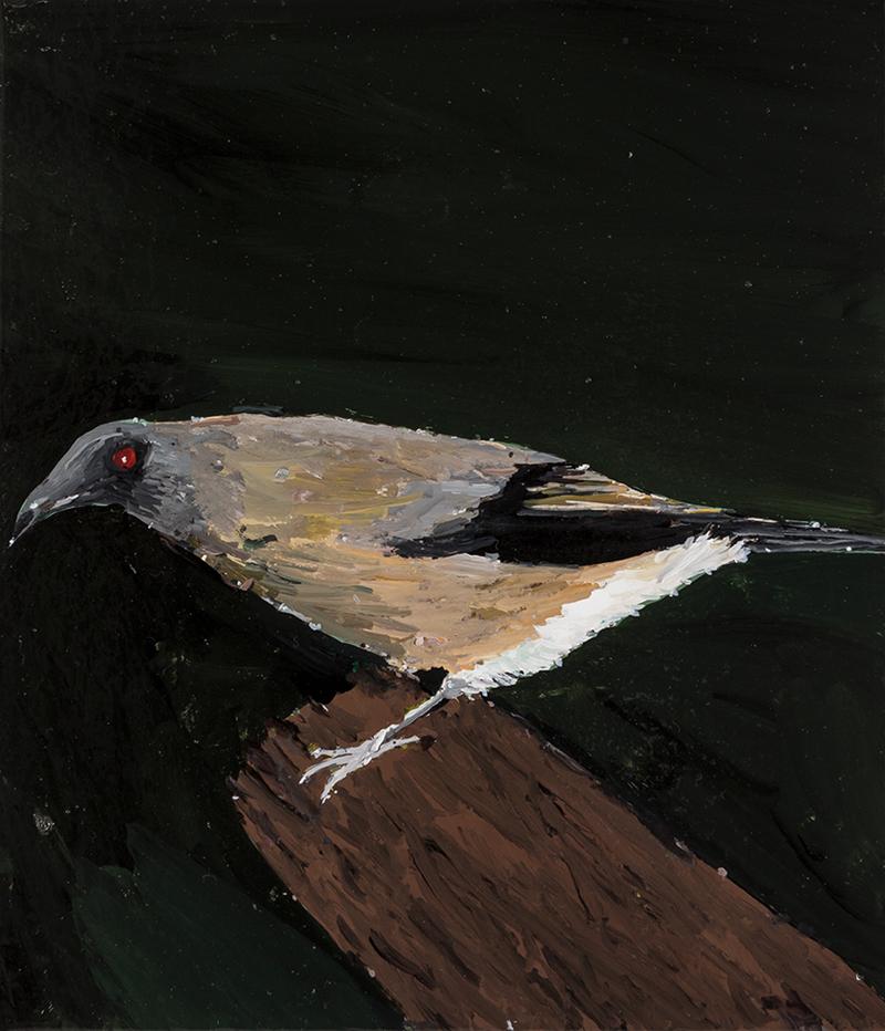 Richard Lewer  Bellbird,  2019 Enamel on canvas 355 x 310 mm  ______