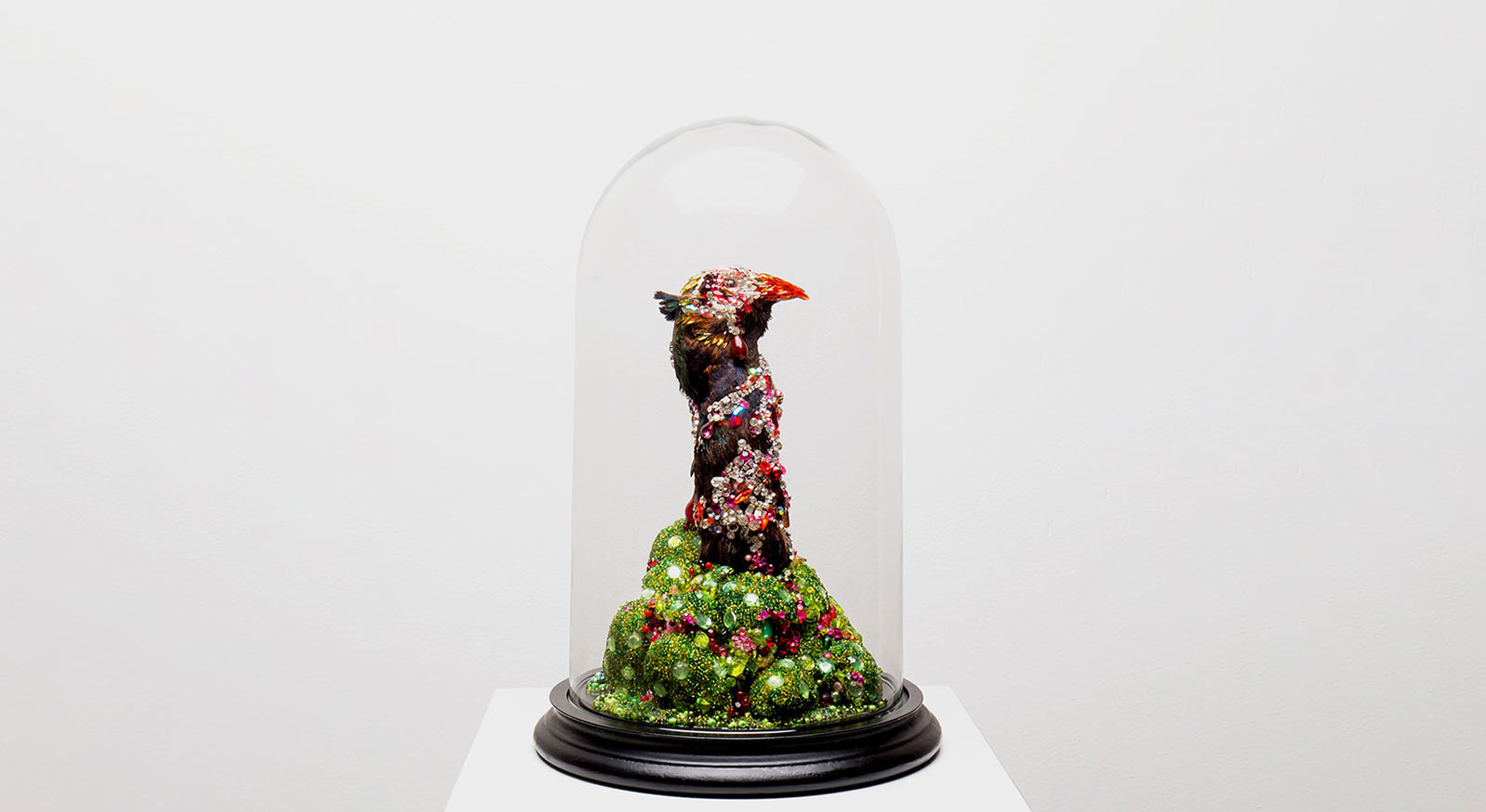 Angela Singer  Nepenthe , 2011 - 2015 Recycled vintage taxidermy pheasant, gems, mixed media 330 x 190 x 190 mm   _______