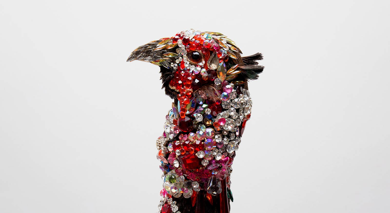 Angela Singer  Nepenthe , 2011 - 2015 (detail) Recycled vintage taxidermy pheasant, gems, mixed media 330 x 190 x 190 mm   _______