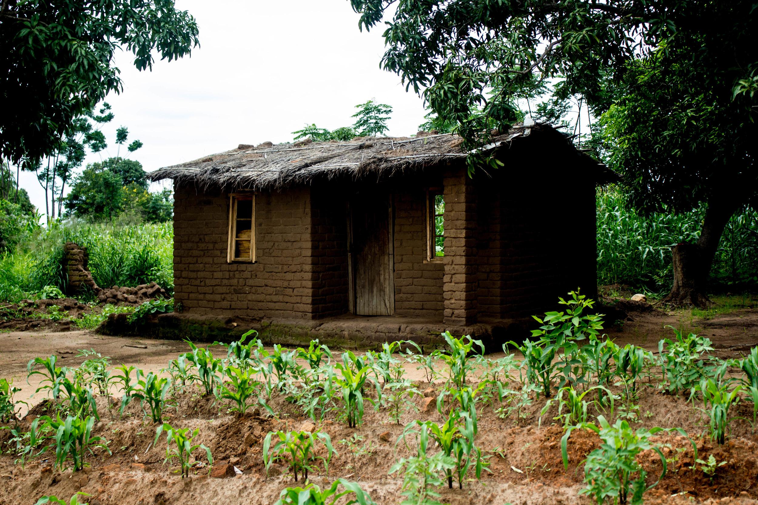 Malawi February 2015 Week 3-44.jpg
