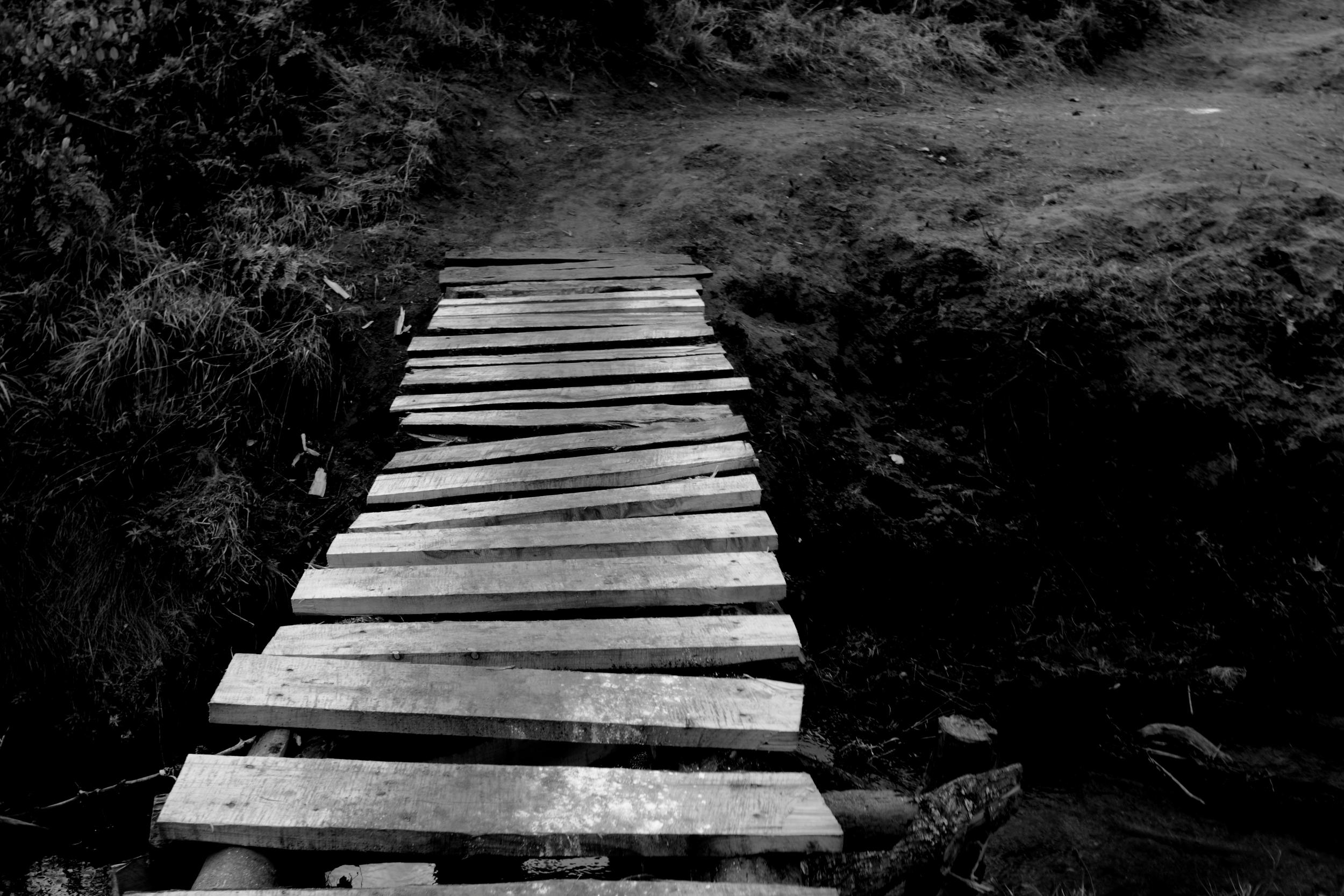 Bridge Path_02.JPG