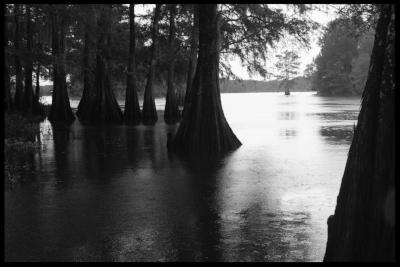 Spring Bayou, Avoyelles Parish, Louisiana