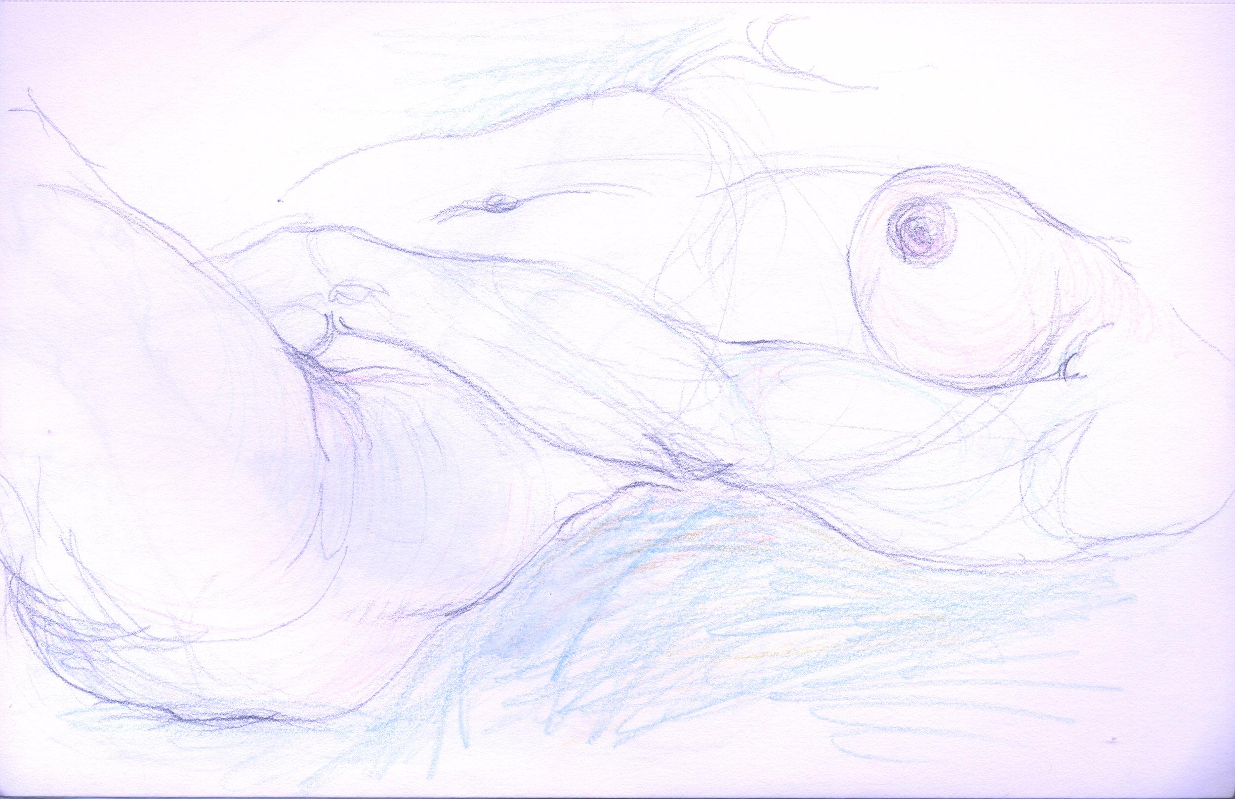 eroticbook 31.jpg