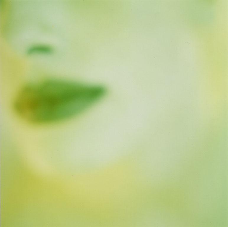 1greenface.jpg