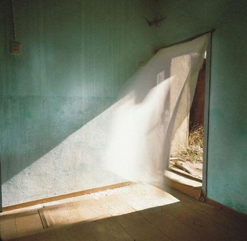 CAROL_FULTON_PHOTOGRAPHY_Green Room - Carol Fulton.jpg