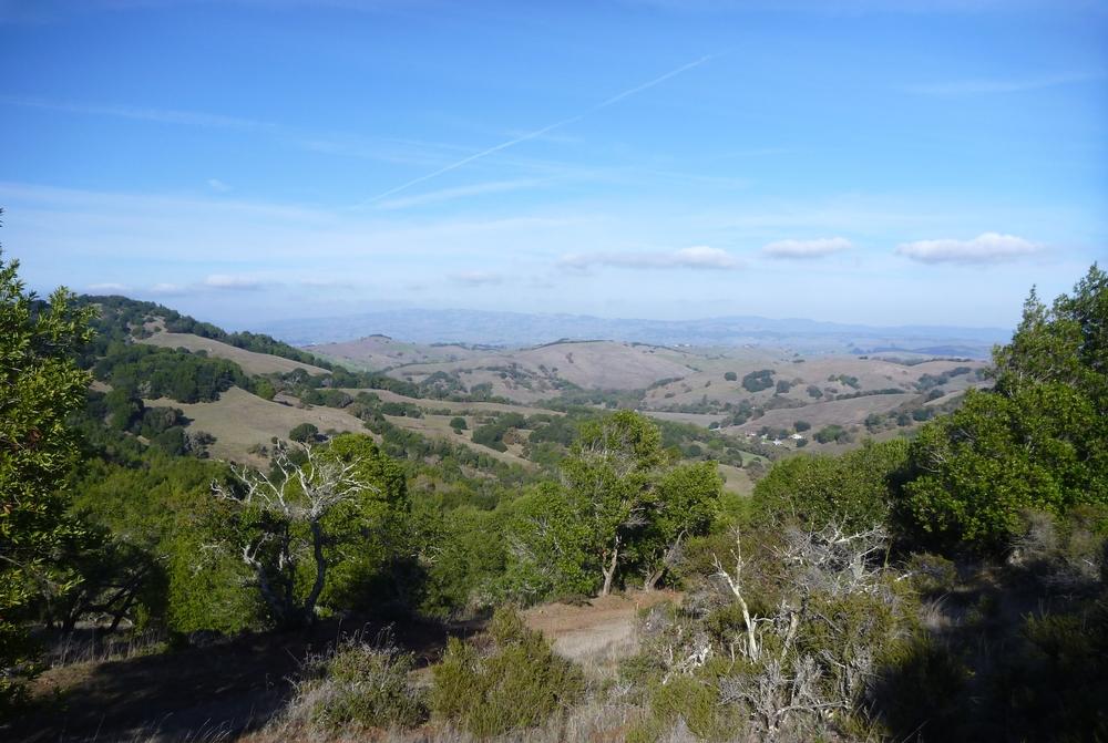 North-Bay-Highlands-Conservation-Bank.JPG