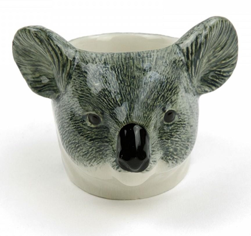 koala-front.jpg