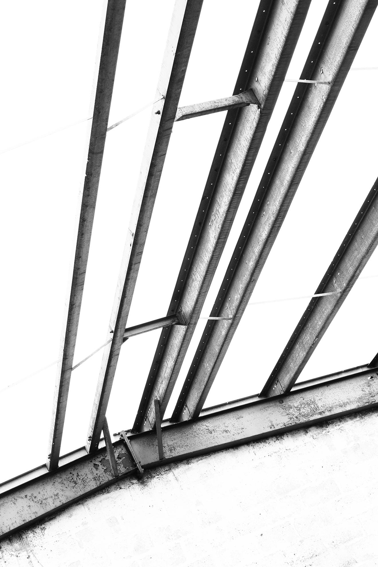 cage-9.jpg