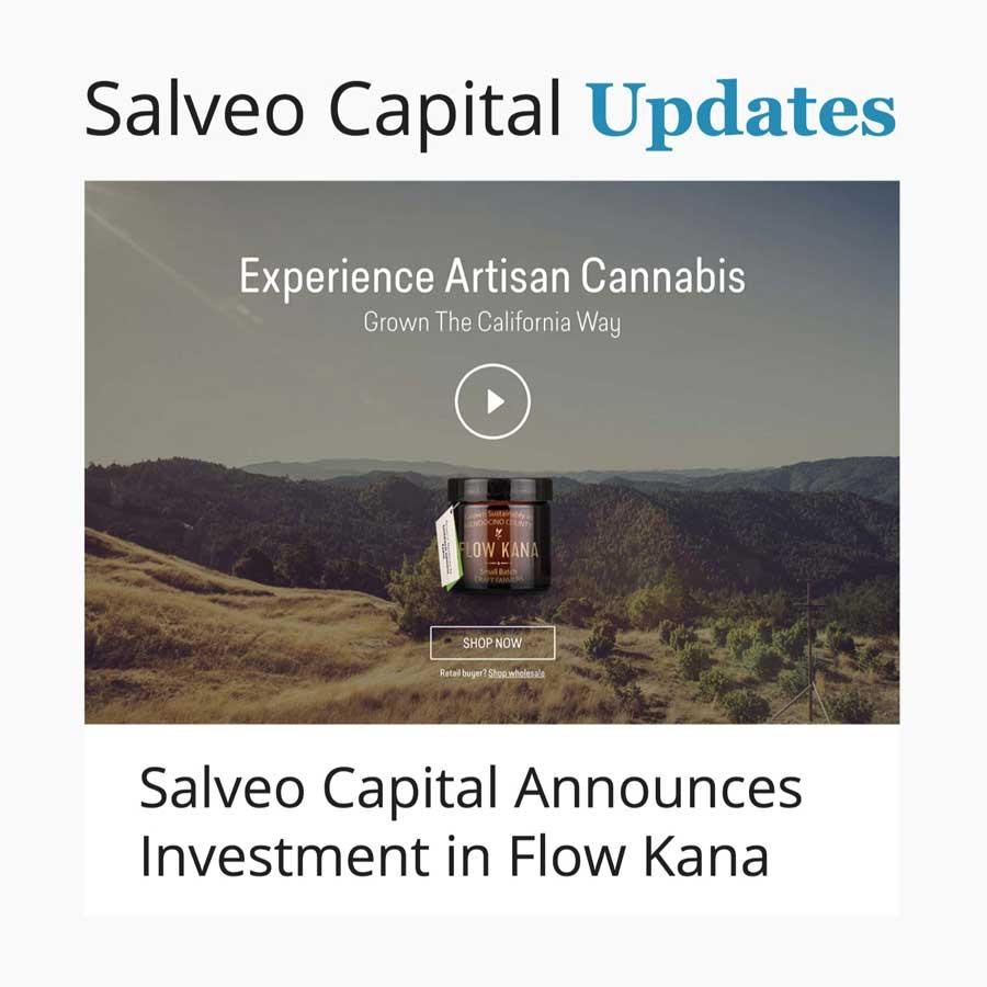 Salveo-Capital-Website-3-Realm-72.jpg