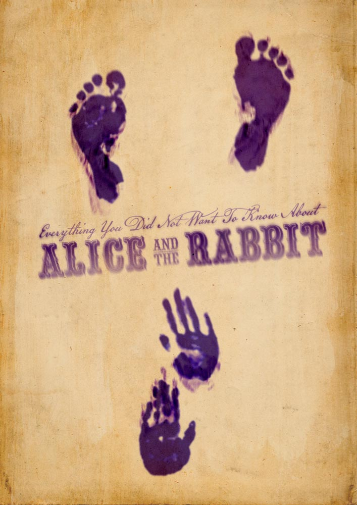 saara-salmi-about-alice-and-the-rabbit-teaser2.jpg
