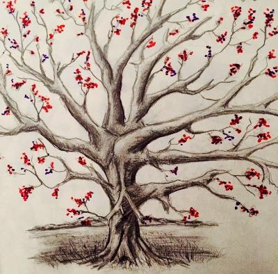 willow tree sketch color.jpg
