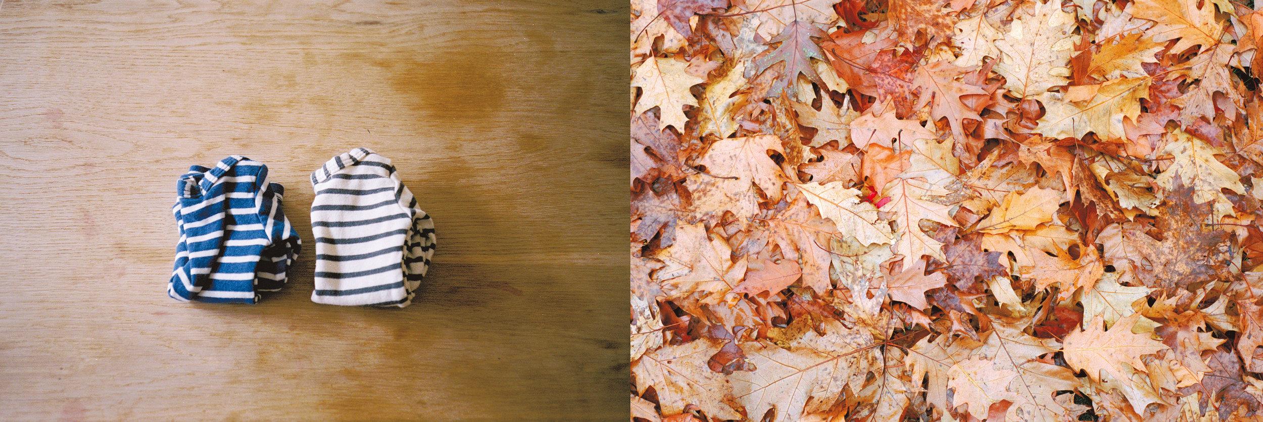 November diptych