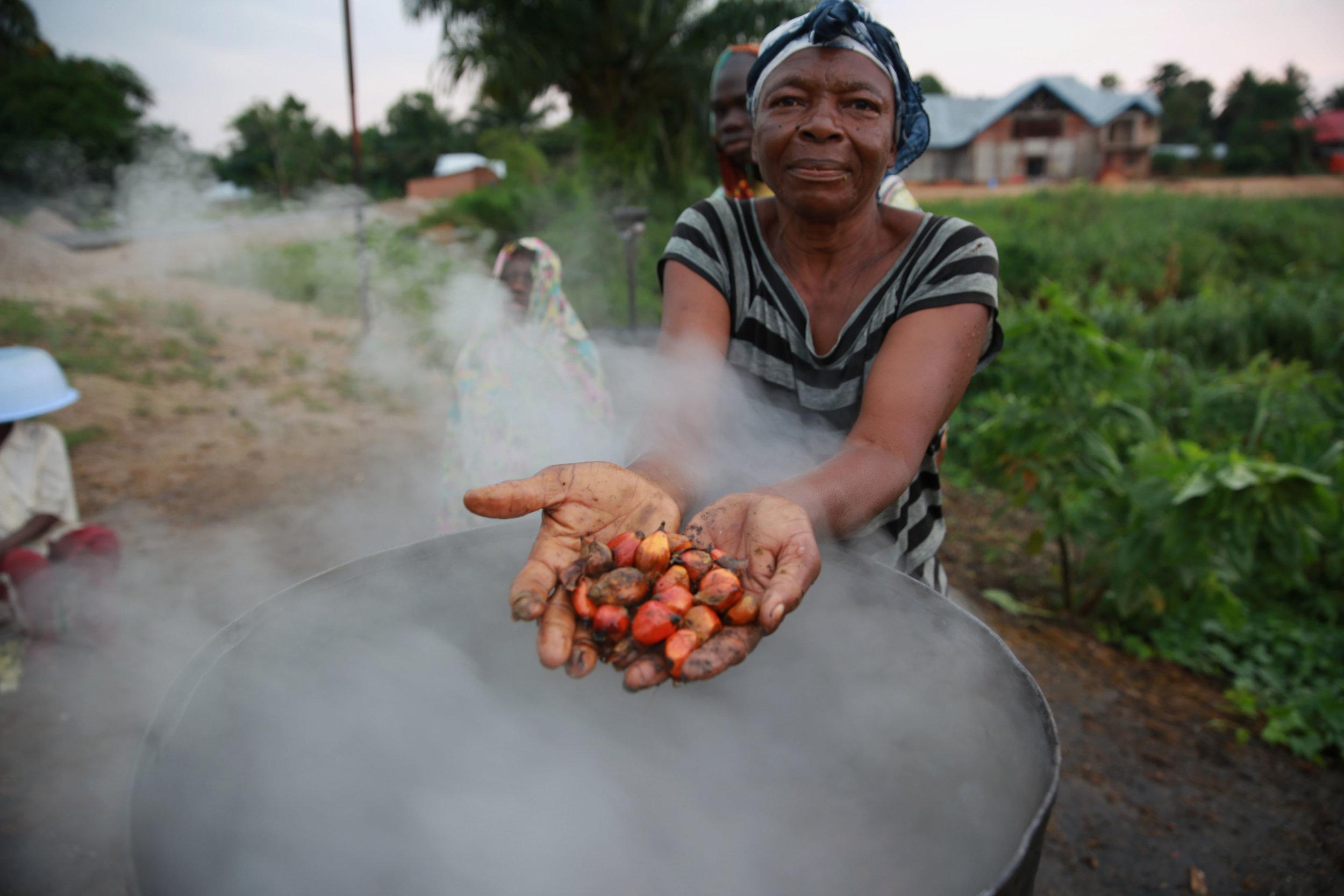 Palm Oil Production, DR Congo.Photo credit:http://bit.ly/2msgaEn