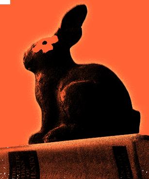 blackrabbit_red