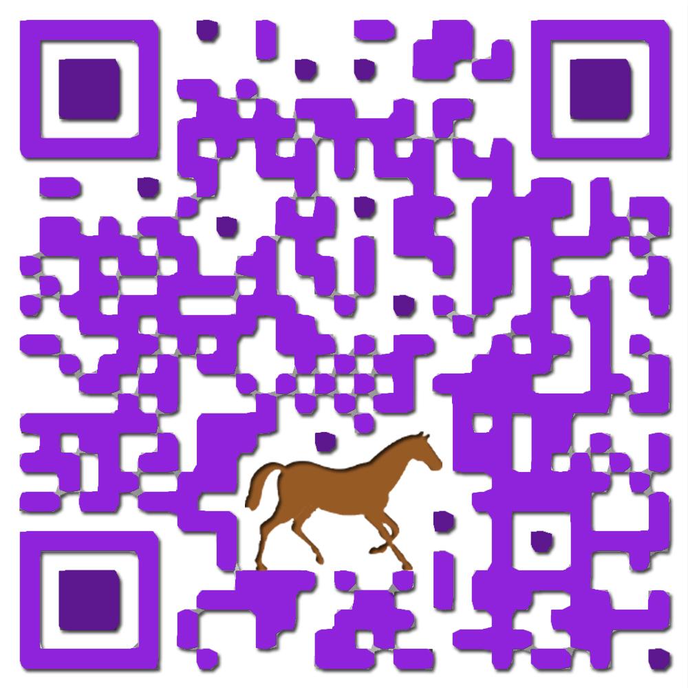 horse.qr.example.jpg