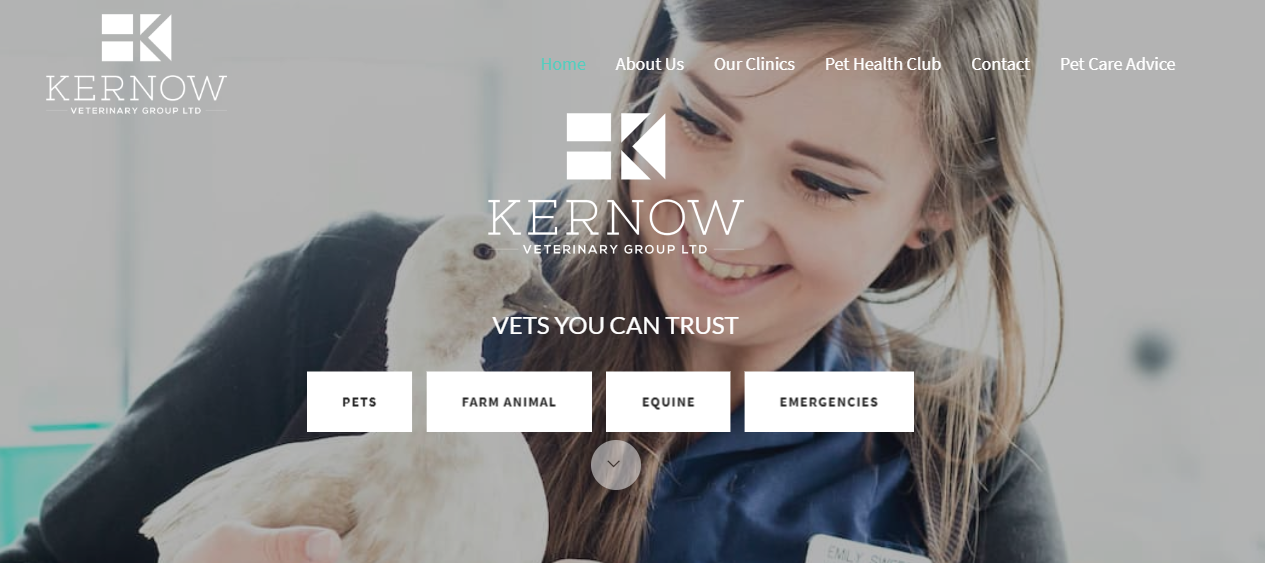 Kernow Veterinary Group.PNG