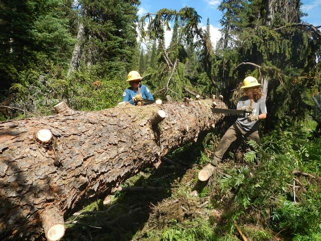 Trail #430 Nex Perce NF July 18-23 031.jpg
