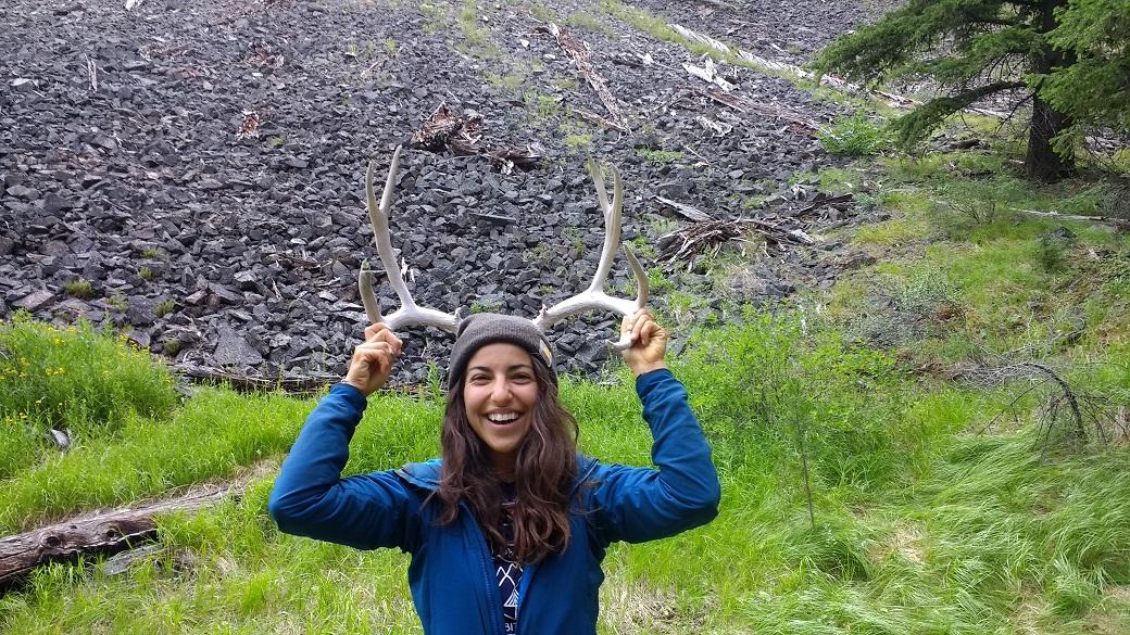 Kelly grew antlers