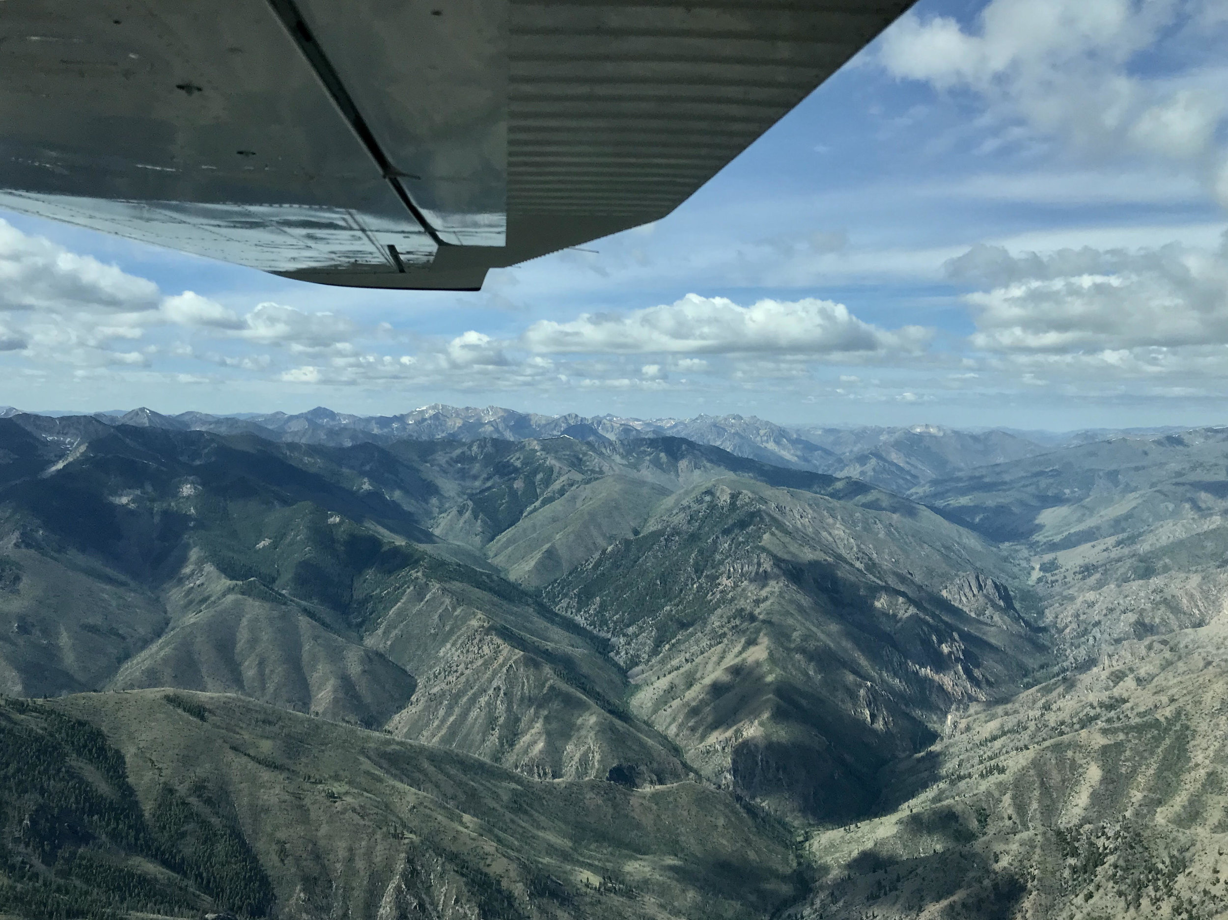 The view out over the Frank Church as we flew back into Challis on 07/17