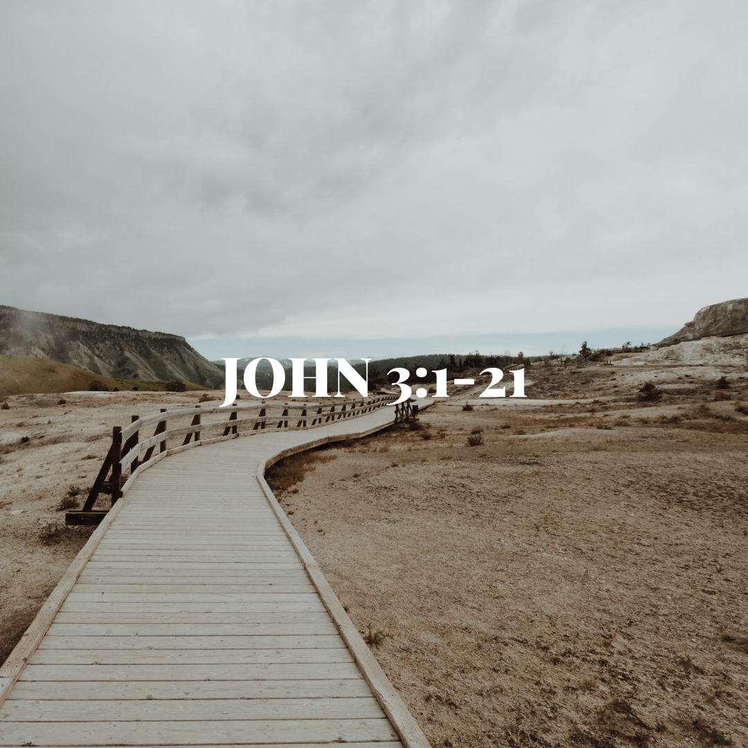 """WEDNESDAY DECEMBER 19:  This passage contains the most famous verse in the entire Bible (3:16), but it's jam packed with so much more. Jesus goes straight for the jugular here. He says that in order to be a part of God's restoration (the """"kingdom""""), you have to go all the way back to the beginning and start over (be """"born again"""") with a whole new perspective on life and a whole new course of actions. It's not some wayward sinner Jesus tells this to; he scandalously says this to one of Israel's most religious and holy people. This guy expects to be praised for his righteousness, but instead Jesus tells him that he needs to be saved, and that God's kingdom isn't just for this guy, or even just for the Jews, but for the whole world."""