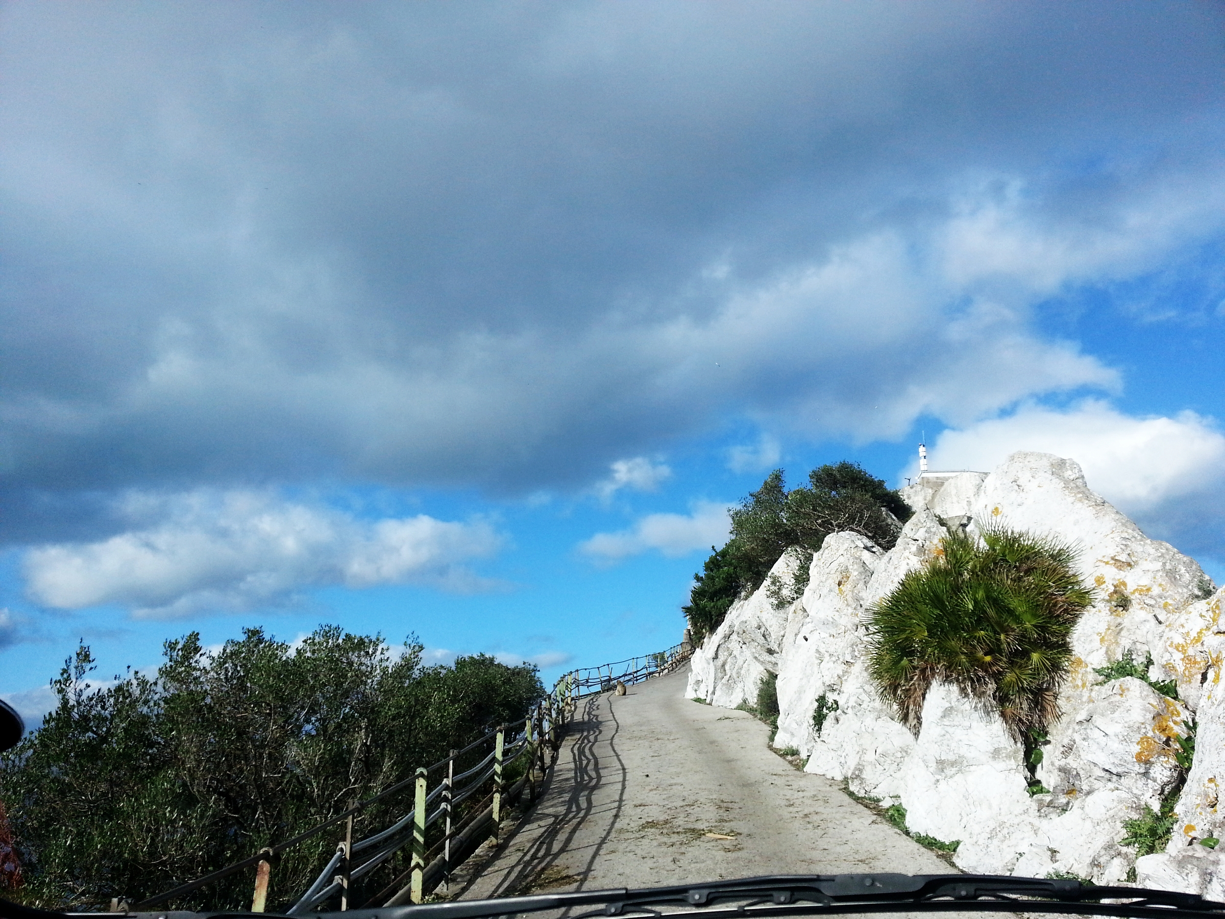 Gibraltar . Approaching Apes Den... Watch out for monkeys sitting on the road!