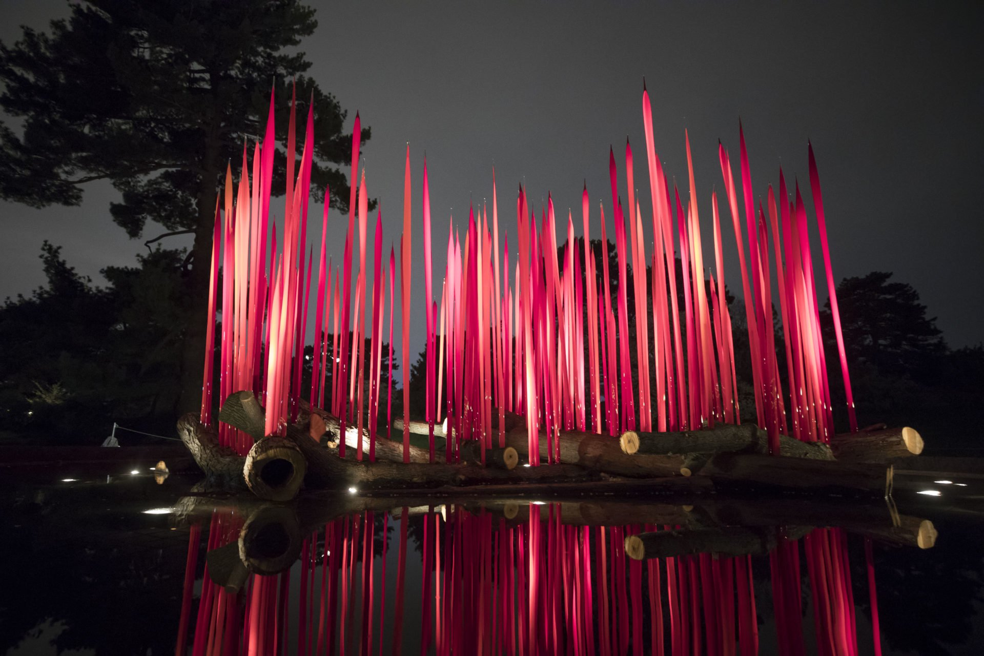 NYBG_CHIHULY_02-Red_Reeds_on_Logs_2017-1920x1280.jpg