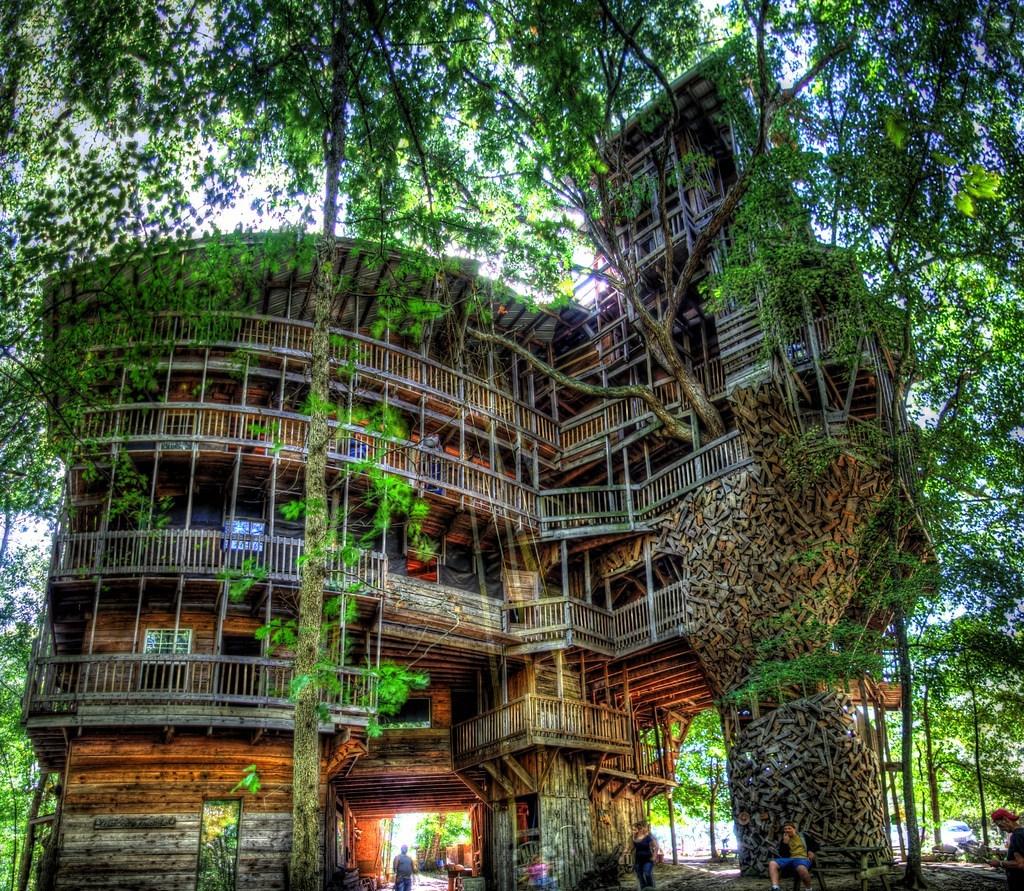 Worlds Tallest Tree house.jpg