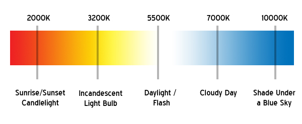 Color temperature spectrum in Kelvin.    Source   .