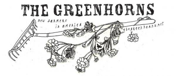the greenhorns
