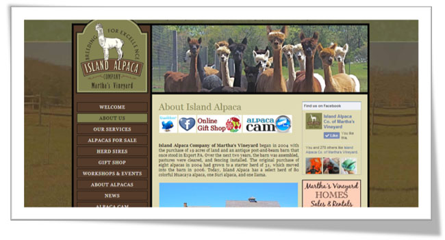 island alpaca website