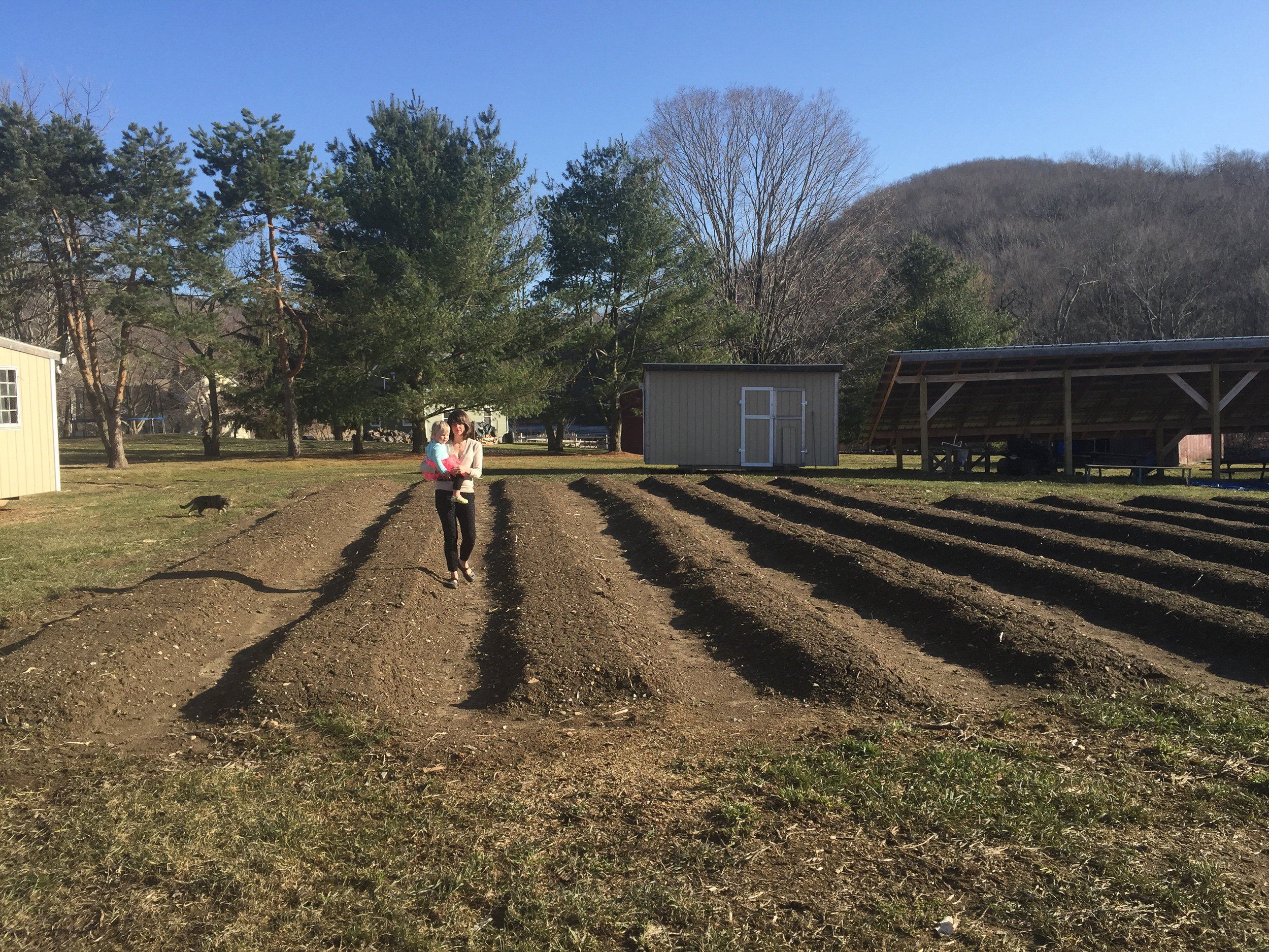 One of our projects on farm was building garden beds.