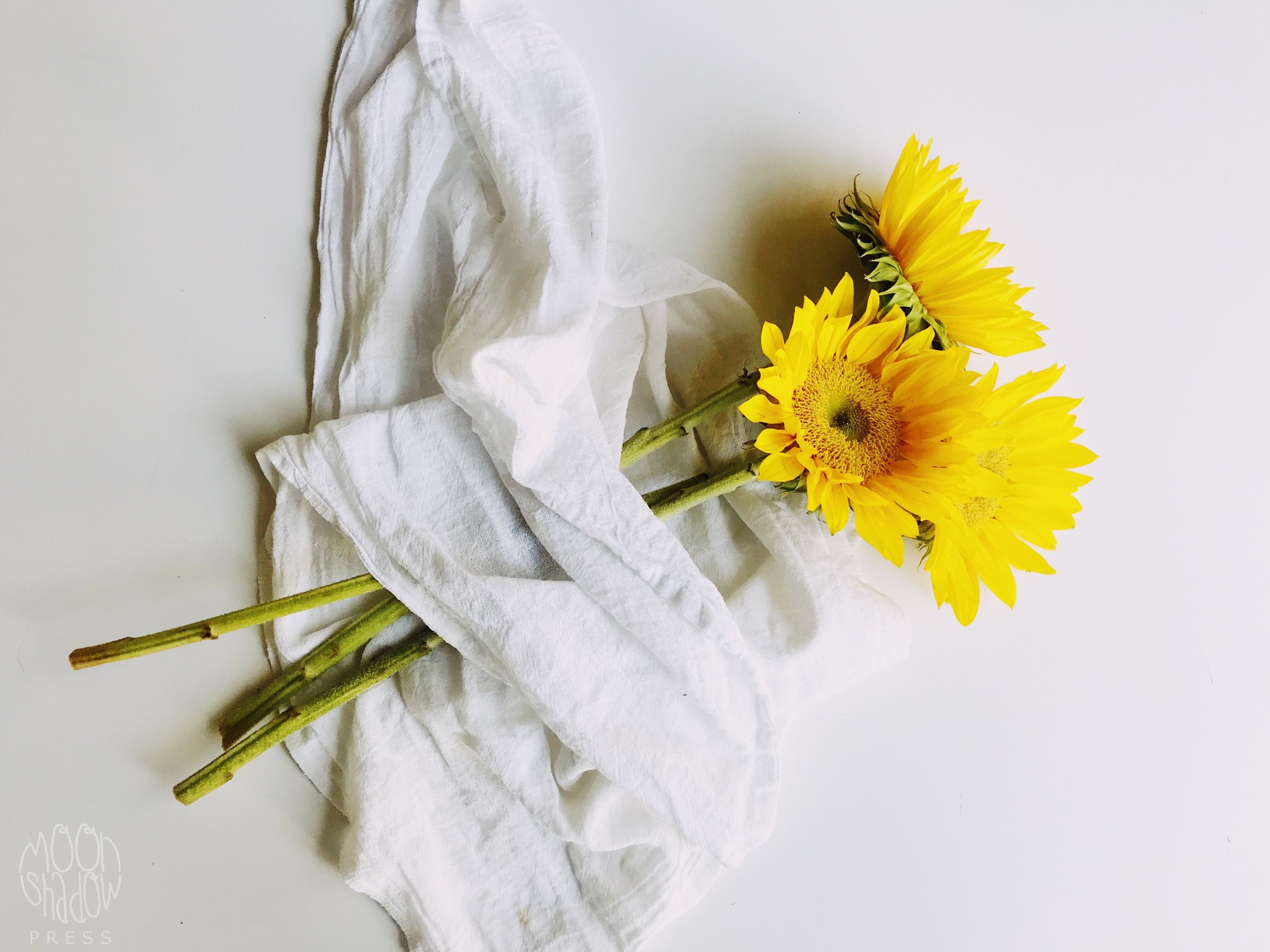 Sunflowers19L.jpg