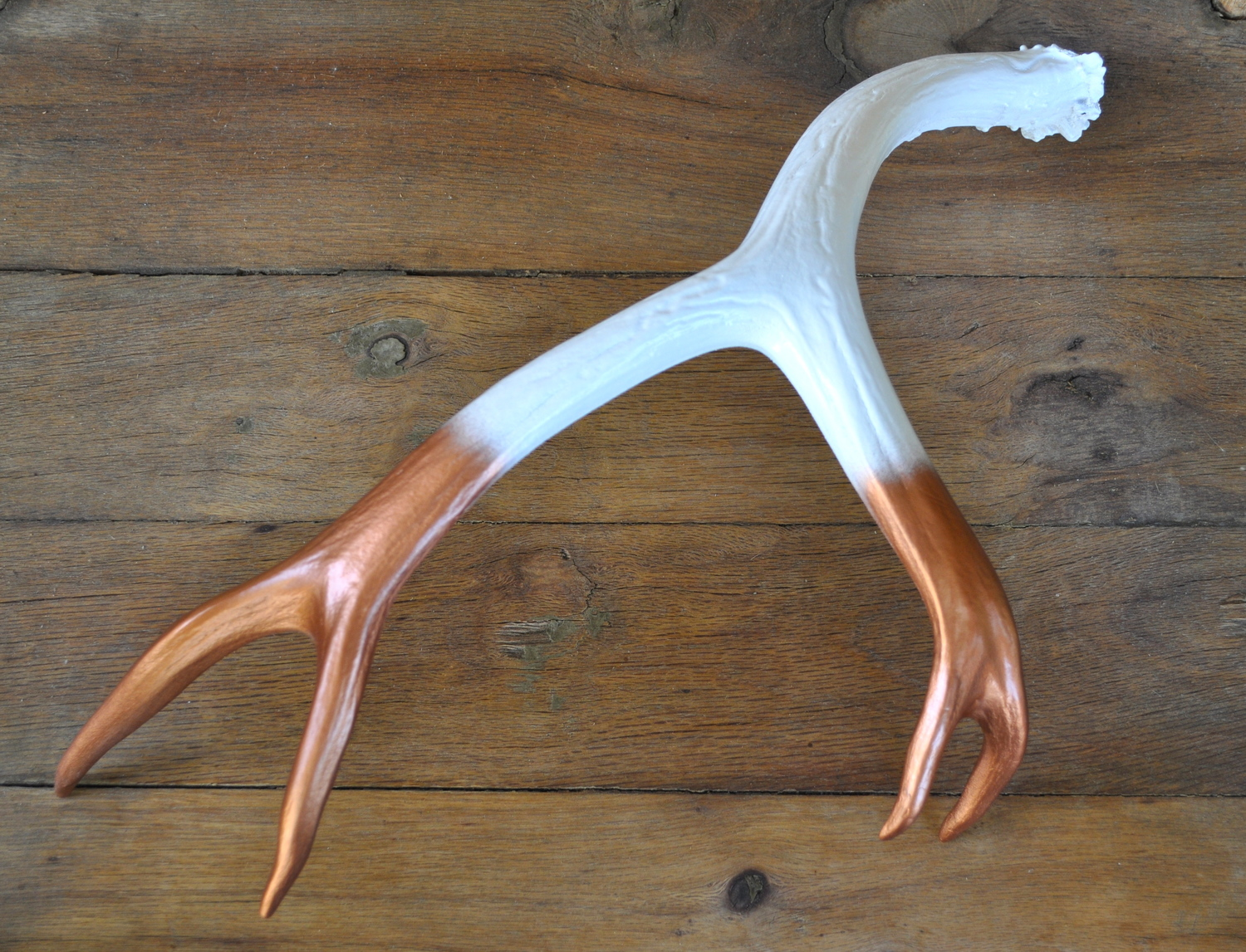 whitecopperantler.jpg