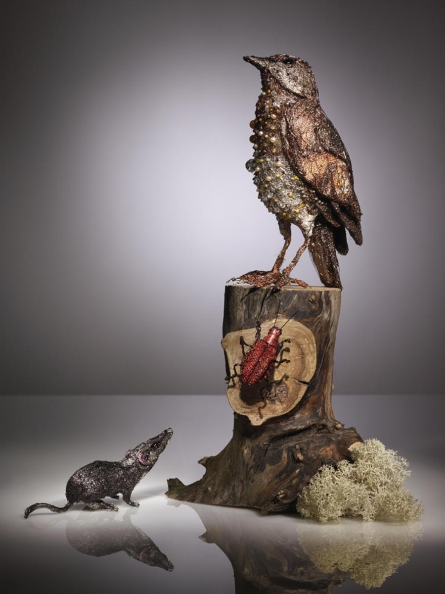Bird | Photography by Karin Berndl