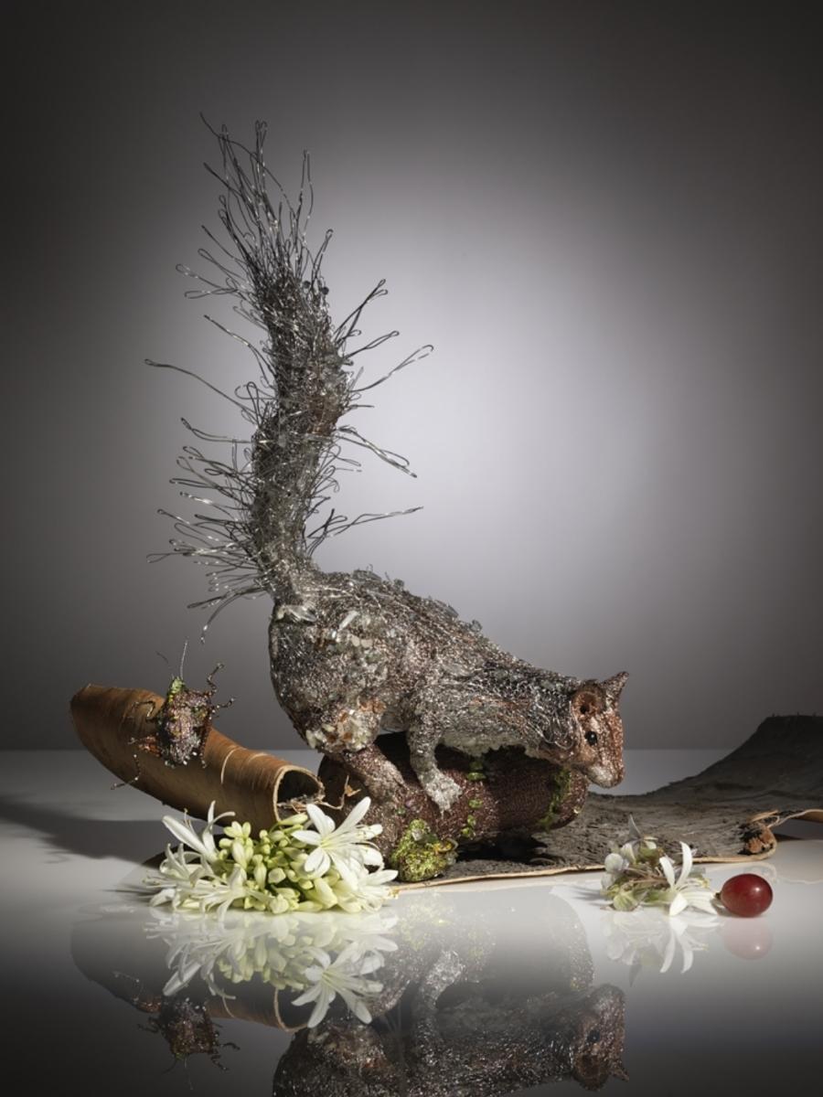 Squirrel | Photography by Karin Berndl