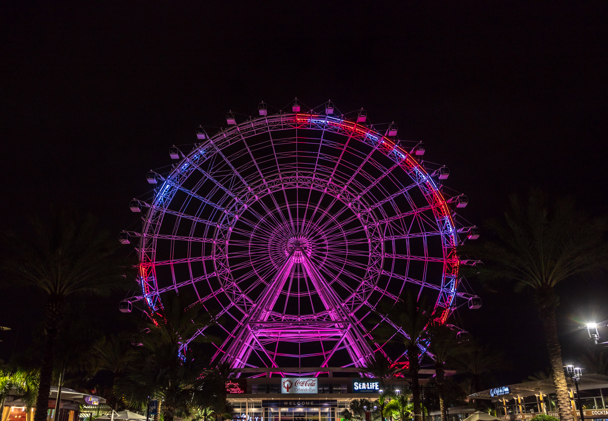Visit Orlando-12.jpg