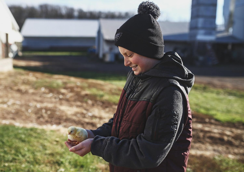 Bolton's Farm-1.jpg