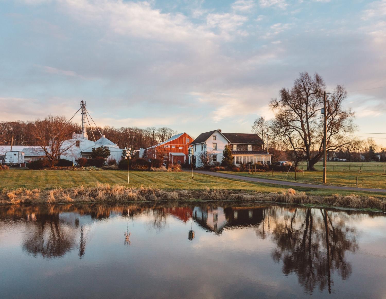Bolton's Farm-4.jpg