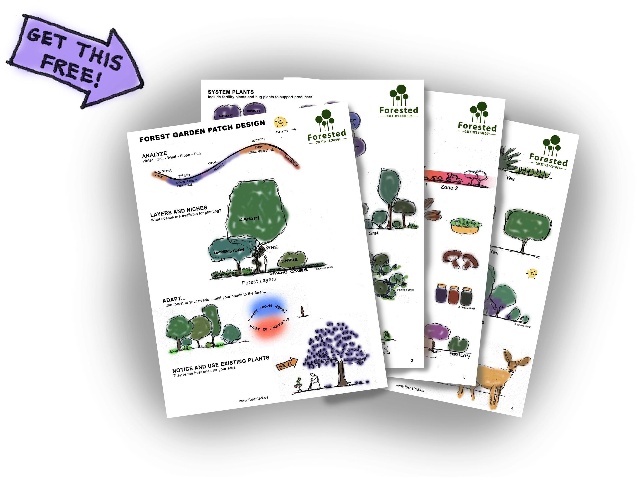 Forest garden design guide