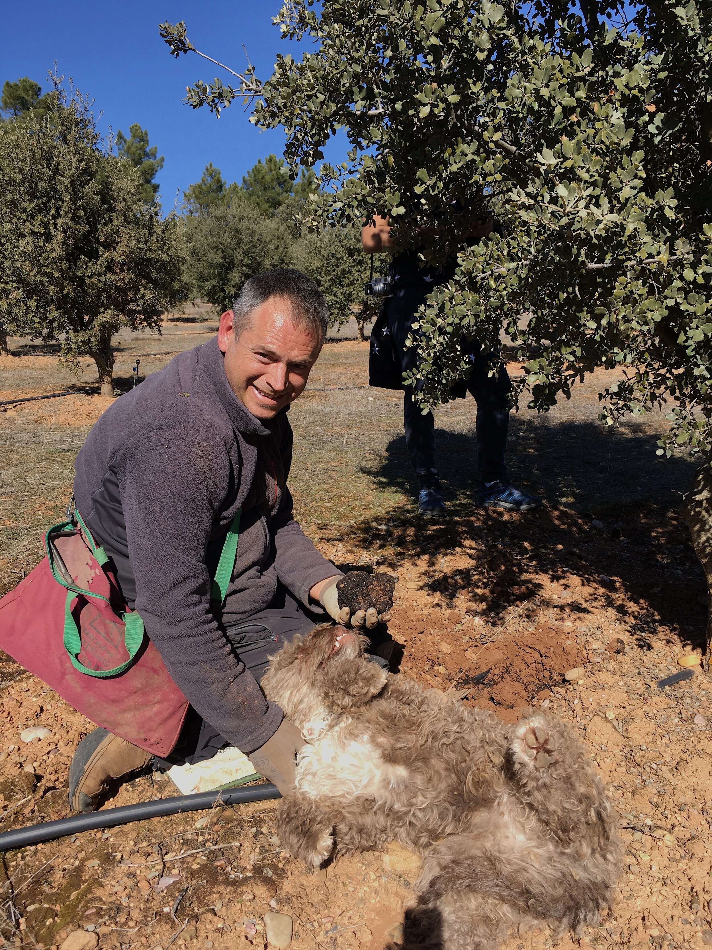 Learn about the dynamic process of Black Truffle cultivation with experienced truffle farmers.