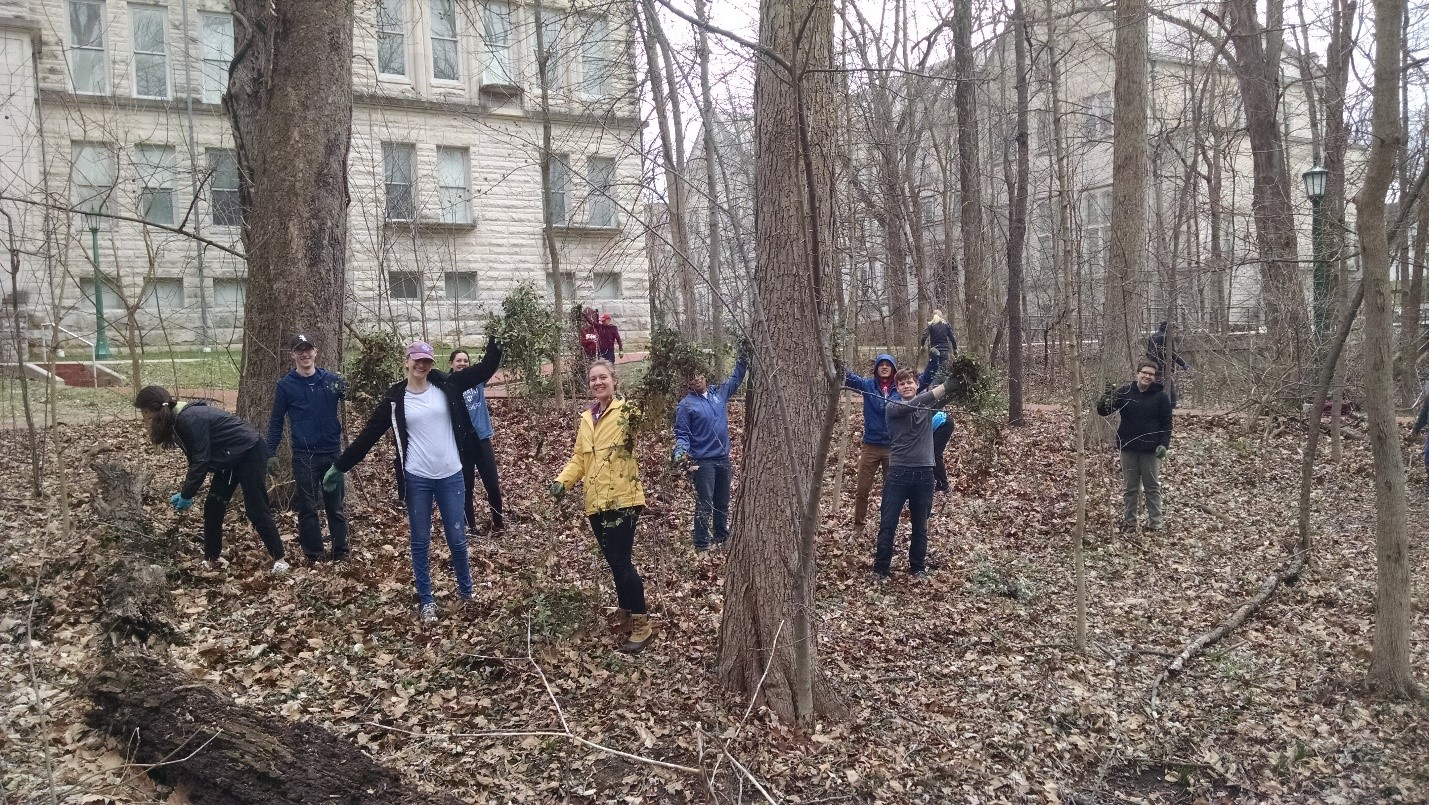 Weed Wrangle® Event held at Dunn Woods in Bloomington.