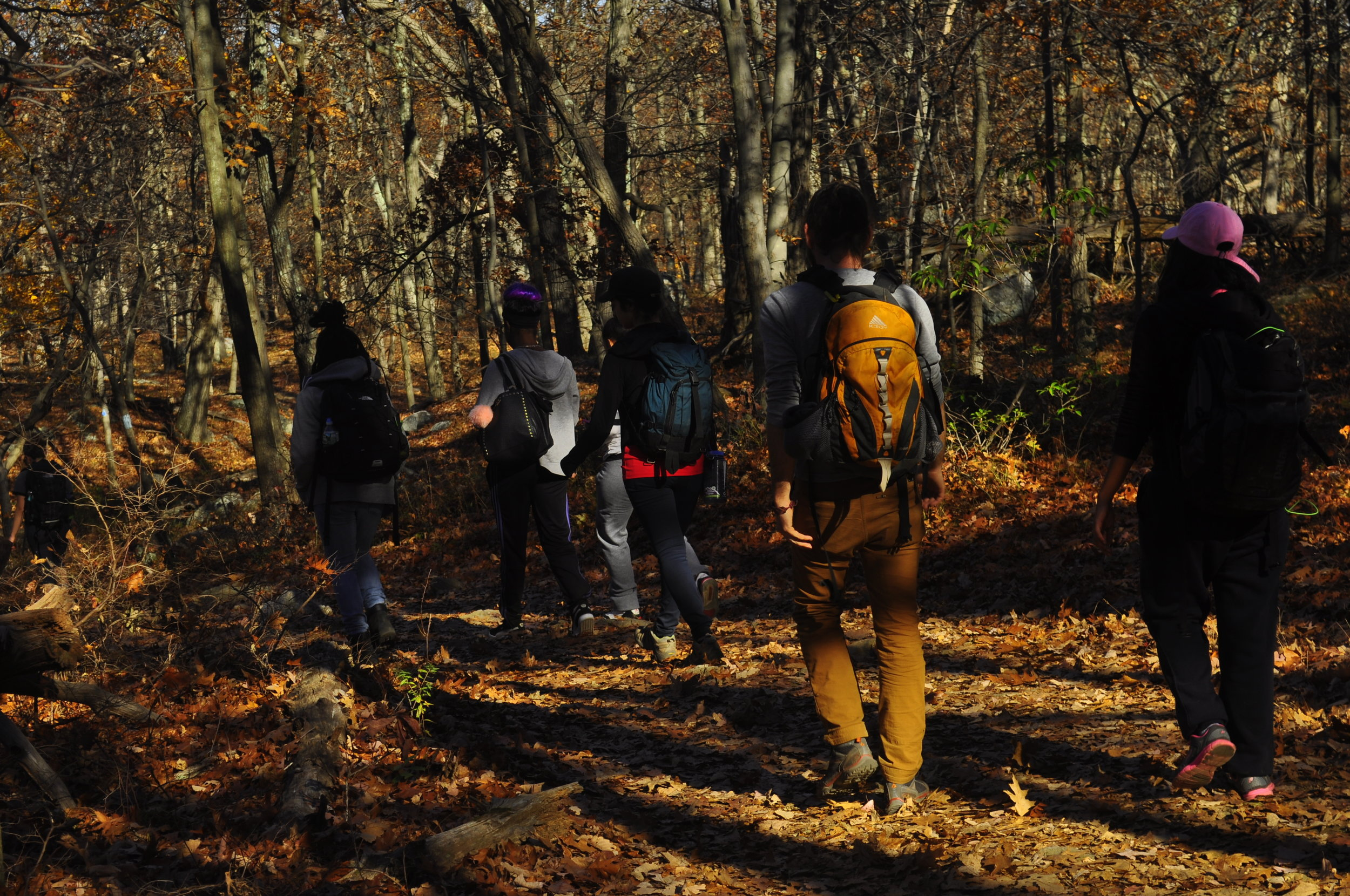 The fall crew hiking in upstate New York.
