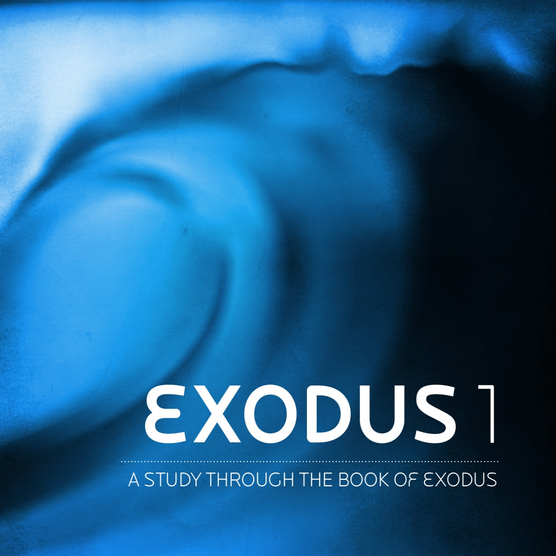 exodus 1_t.jpg