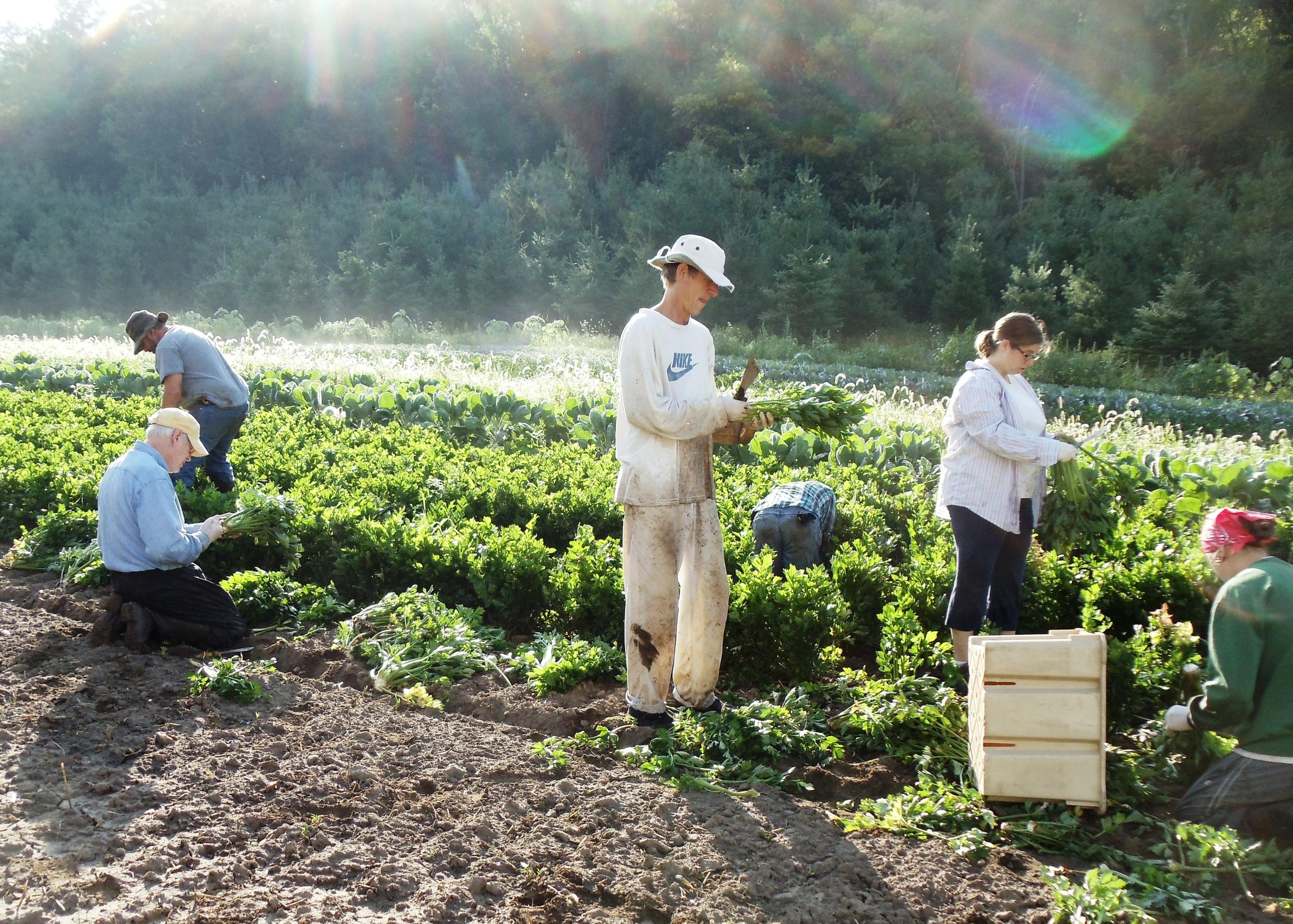 Worker Shares Vermont Valley.JPG