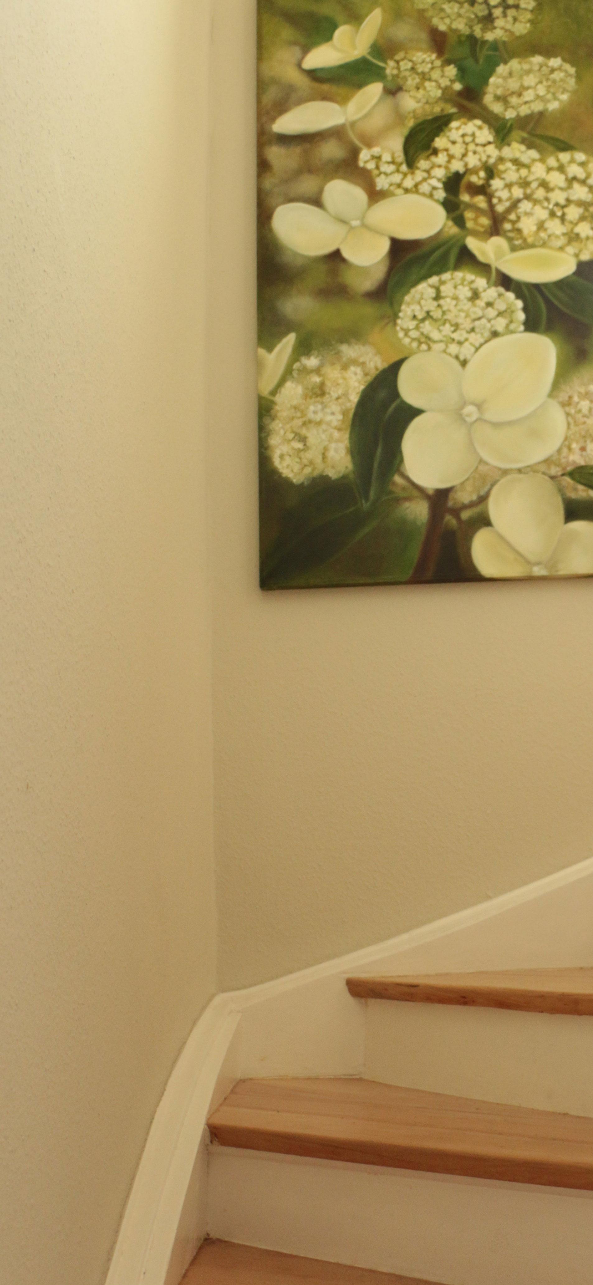 hortensien.jpg